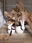 Osterhasen Pärchen 2er Set Keramik, weiß Lederbändchen  1