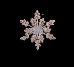 Adventsschmuck Schneeflocke mit Lärchenzapfen 33,5 cm 1