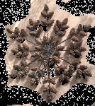 Adventsschmuck Schneeflocke mit Lärchenzapfen  1