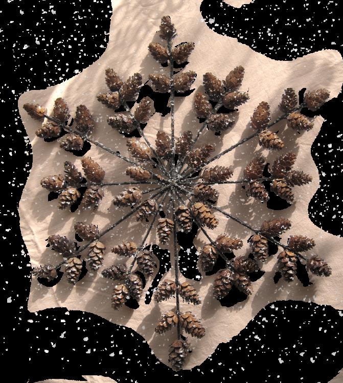 Adventsschmuck Schneeflocke mit Lärchenzapfen