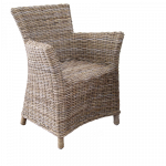 Rattan-Stuhl Fidel und Auflage  2